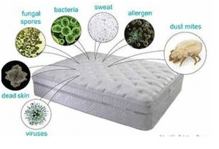 How to Properly Clean a Mattress