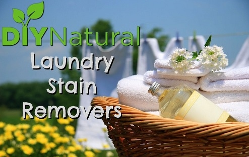 Natural Stain Remover's